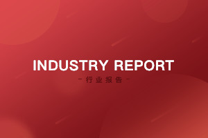 Industry Report: 「Building a WeChat Work Ecosystem」