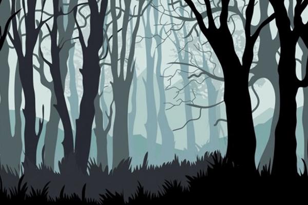 数字化转型助力企业决胜黑暗森林